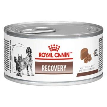 Ração Royal Canin Lata Canine e Feline Veterinary Diet Recovery Wet
