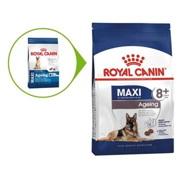 Ração Royal Canin Maxi Ageing 8+ para Cães Adultos de Raças Grandes Idosos com 8 Anos ou mais