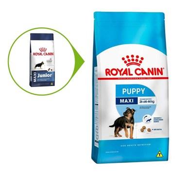 Ração Royal Canin Maxi Puppy para Cães Filhotes de Raças Grandes de 2 a 15 Meses de Idade