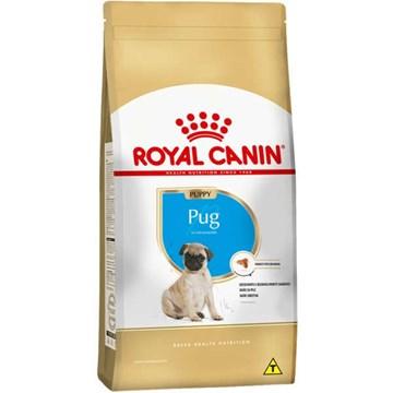 Ração Seca Royal Canin Puppy Pug para Cães Filhotes